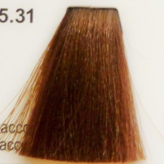 Vopsea de par CLR cu amoniac - nr. 5.31 - 100 ml, Parisienne