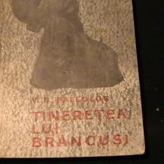 TINERETEA LUI BRANCUSI-V.G. PALEOLOG-228 PG-