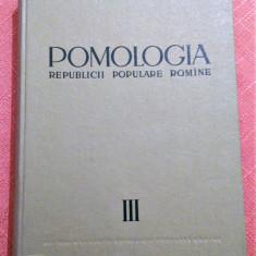 Pomologia R.P.R. Vol. III. Parul, gutuiul, mosmonul, scorusul - T. Bordeianu, Alta editura, 1964