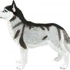 Figurină Câine Husky siberian, Safari