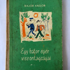 Egy bátor egér viszontagságai, Bajor Andor, Ion Creangă, Bukarest, 1971