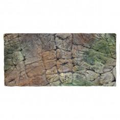 Fundal 3D pentru terariu 60 x 40 cm - PUPE
