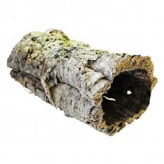 Decoraţiune terariu - tub de plută, 40 - 60 cm
