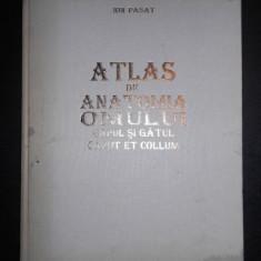 ION PASAT - ATLAS DE ANATOMIA OMULUI. CAPUL SI GATUL (1995)