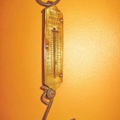 6605-Cantar vechi buzunar Krups Pockets Balance.
