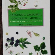 CAPSUNUL,ZMEURUL,COACAZUL,MURUL - TEHNICI DE CULTIVARE - DOREL HOZA