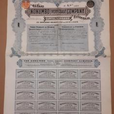 Actiuni la purtator Kokumbo Company - 1903 - Coasta de fildes