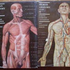 Human Anatomy Vol.1-2 - M. Prives N. Lysenkov V. Bushkovich ,285546