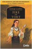 Fire de tort | George Cosbuc, Corint