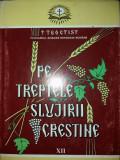TEOCTIST PATRIARHUL - PE TREPTELE SLUJIRII CRESTINE - VOL. XII {2002}