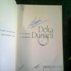 DELTA DUNARII - A.C. BANU