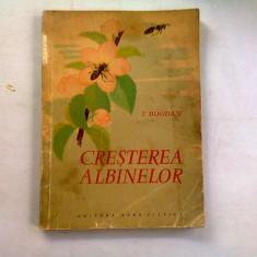 CRESTEREA ALBINELOR - T. BOGDAN