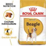 Cumpara ieftin Royal Canin BEAGLE Adult Hrana Uscata Caine