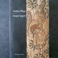 ANDREI PLESU - DESPRE INGERI