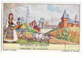 5- HUNEDOARA, Castelul Huniazilor taran la arat port popular - old mini postcard, Necirculata, Printata