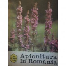 REVISTA APICULTURA IN ROMANIA NR.10/1986