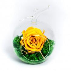 Aranjament trandafiri criogenati MF275