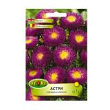 Seminte flori Florian Ochiul boului pompon mov cu galben 0.5 g