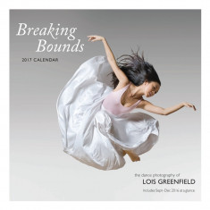 Calendar 2017 - Breaking Bounds | Chronicle Books