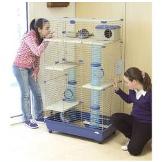 Cuşcă pentru rozătoare SARA 82 C3, albastru - 82 x 51 x 142 cm