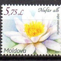 MOLDOVA 2019, Flora, Nuferi, serie neuzata, MNH, Nestampilat