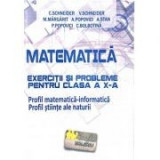 Matematica - Exercitii si probleme pentru clasa a X-a. Profil matematica-informatica, editie noua - revizuita - Virgiliu Schneider, Clasa 10, Auxiliare scolare