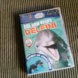 DVD Afla totul despre delfini, Romana, discovery channel
