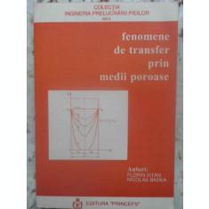 FENOMENE DE TRANSFER PRIN MEDII POROASE-FLORIN VITAN, NICOLAE BADEA