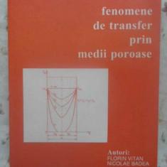 FENOMENE DE TRANSFER PRIN MEDII POROASE - FLORIN VITAN, NICOLAE BADEA