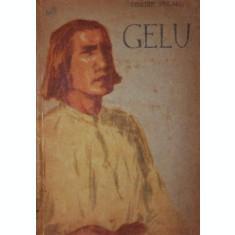GELU - DIMITRIE STELARU