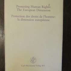 PROTECTING HUMAN RIGHTS: THE EUROPEAN DIMENSION-IN HONOUR OF GERARD WIARDA