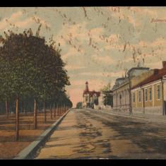 1910 Romania, CP Turnu Severin Bulevardul Carol I, circulata la Giurgiu