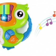 Pianina Papagal pentru copii cu melodii sunete de pasari si animale