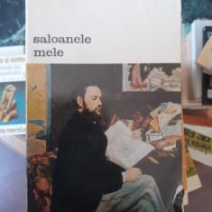 Saloanele mele – Emile Zola