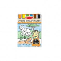 Set de pictura cu apa safari