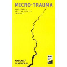 Micro-trauma - Margaret Crastnopol