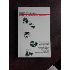 FETELE SCHIMBARII, ROMANII SI PROVOCARILE TRANZITIEI - COLECTIV DE AUTORI