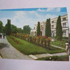 Carte postala - Cluj Napoca (Gradina Botanica), Necirculata, Fotografie