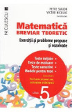 Matematica - Clasa 5 - Breviar teoretic - Petre Simion, Victor Nicolae