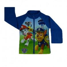 Hanorac maneca lunga baietei Nickelodeon HBN-01, Multicolor