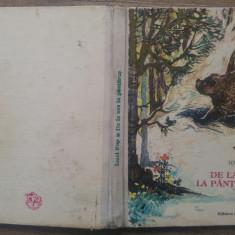 De la urs la pantarus - Ionel Pop/ ilustratii Coca Cretoiu-Seinescu