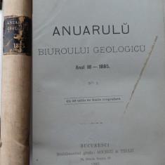 Anuarul biroului geologic , Bucuresti , 1888 , cu 29 gravuri