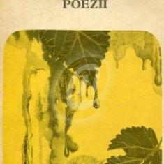 Poezii (Bacovia)