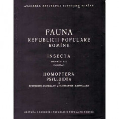 Insecta - vol. VIII, fascicula 3, Homoptera Psylloidea