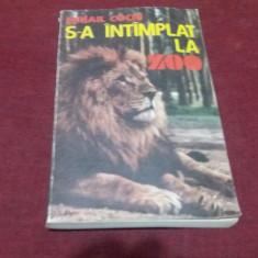 MIHAIL COCIU - S A INTAMPLAT LA ZOO