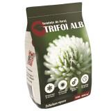 Seminte Trifoi Alb