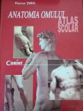 ANATOMIA CORPULUI UMAN, ATLAS ȘCOLAR - FLORICA TIBEA