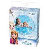 Aripioare inot Disney Frozen INTEX 3 6 ani