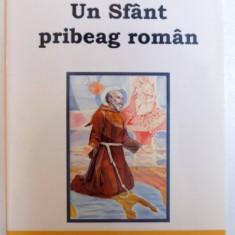 UN SFANT PRIBEAG ROMAN de ILIE DAIANU , 2011