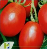 Seminte rosii MISSOURI POP VRIEND si PIETERPIKZONEN 10 g